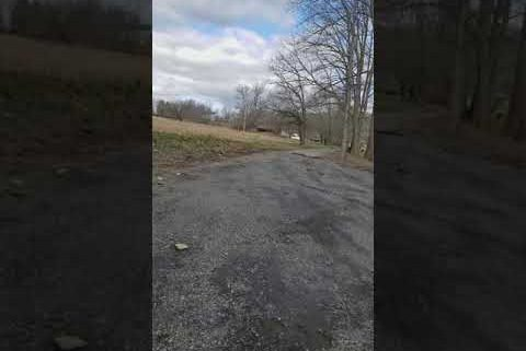Asphalt driveway Re grade and pave